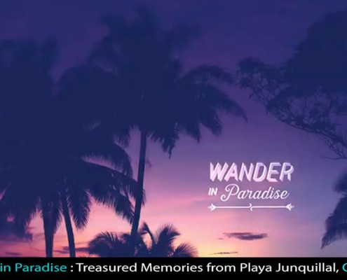 Wander-in-Paradise