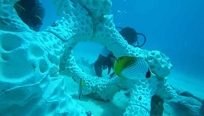 Korallenriff aus dem 3D Drucker 3-D Printed Reef