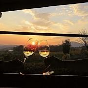 Austria's grand wine tour