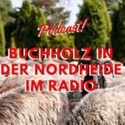 Blog Cover Buchholz in der Nordheide
