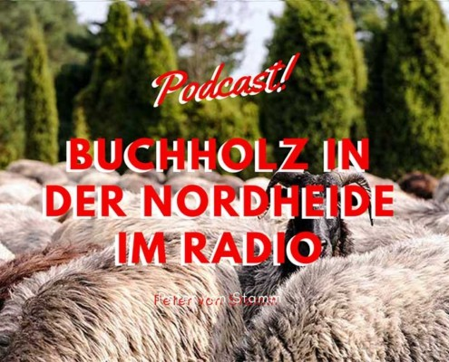 Blog Cover Buchholz in der Nordheide